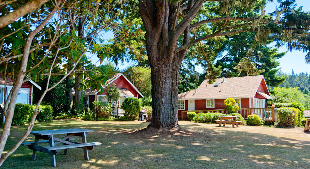 View Crest Lodge - Trinidad, California